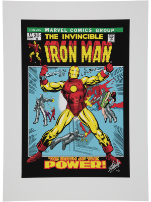 The Invincible IronMan #47 (International Edition)